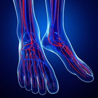 Why It Is Important to Have Good Circulation in Your Feet